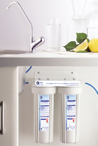 The dual water filter system is tucked away under the sink out of sight